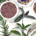 Choosing-Herbal