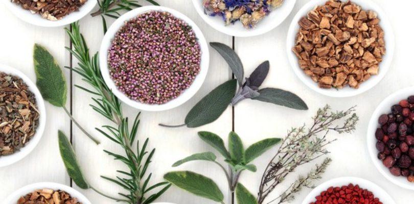 Guide when Choosing Herbal Alternatives to Viagra