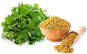 agelessultratgold-ingredients-fenugreek