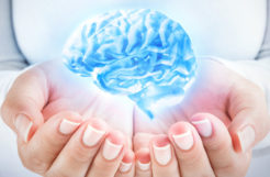Brain Vitale Review: Is it Effective?