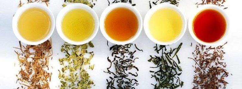 Safety & Efficiency of True Slim Tea