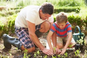 father who uses Progentra gardening in the yard with son