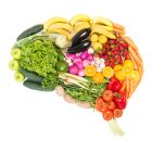 brain made of fruits and vegetables great with Progentra